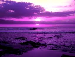 Purple Color Psychology Purple Meaning Personality