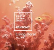 Pantone Color Institute Announces the Color of the Year for 2019: Living Coral