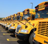 Why School Buses Are Yellow? Here's the Answer.